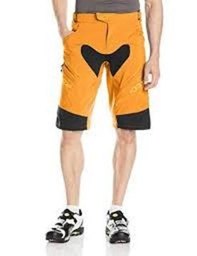 Picture of ALPINESTARS DROP 2 ENDURO SHORTS