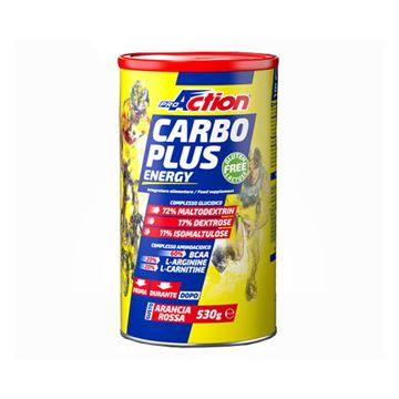 Picture of PRO ACTION CARBO PLUS 530GRMS