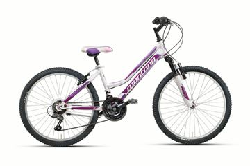 Picture of MONTANA  ESCAPE LADY 24 INCK GIRLS MOUNTAIN BIKE